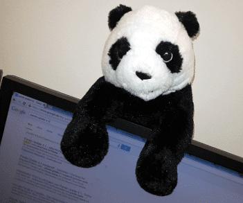 panda-4-1-update